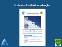 Bollettino - pdf 6MB